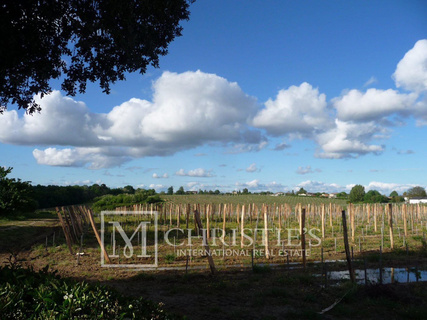 Courtyard - Bordeaux Vineyard estate of approx. 58 ha  with 15th century Chateau