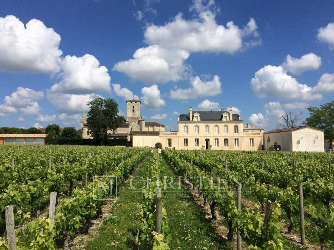 Building - Beautiful Chateau for sale with 1 ha AOC Médoc vineyard