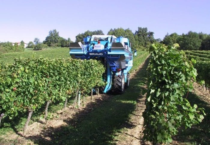 The 2014 Bordeaux Harvest is underway
