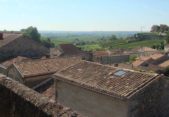 Saint Emilion Vineyards – Evolution