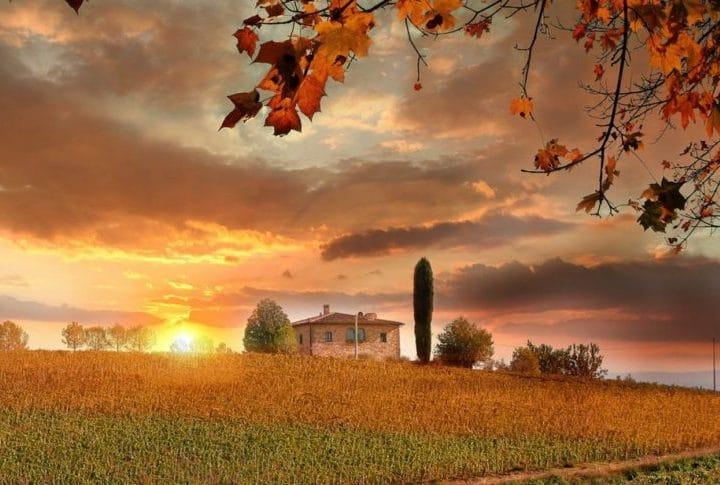 Bordeaux Vineyards at a glance