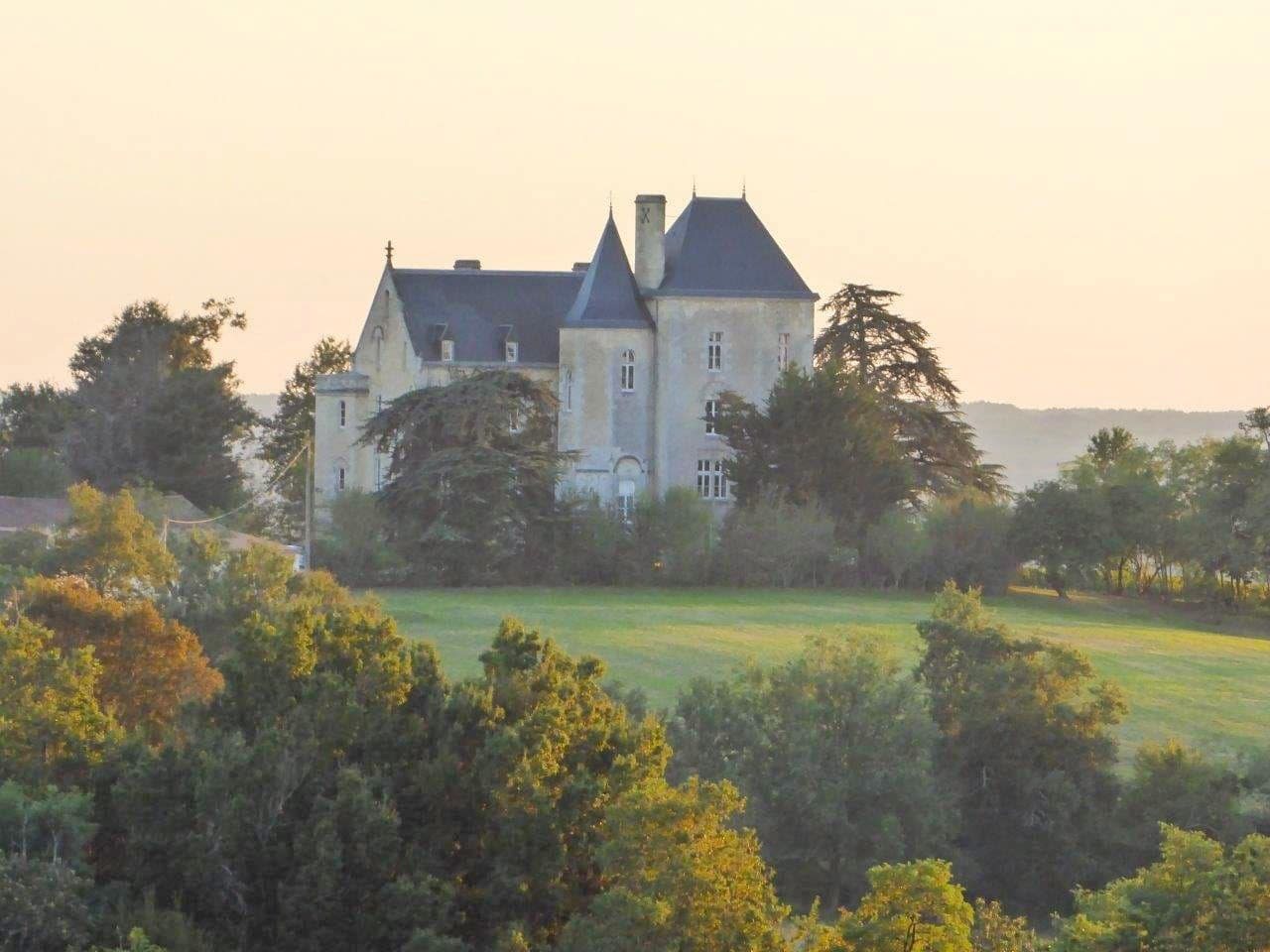Could Chateau Fauchey be the shape of future Bordeaux vineyard sales?