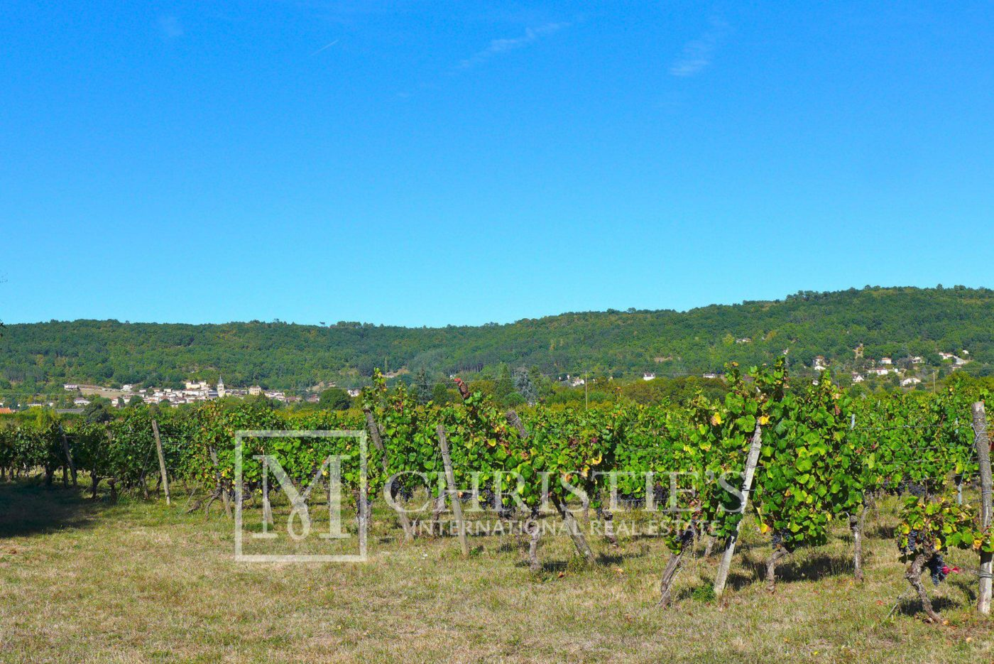 Mountains - Domaine with Organic Vineyard In AOC Cahors