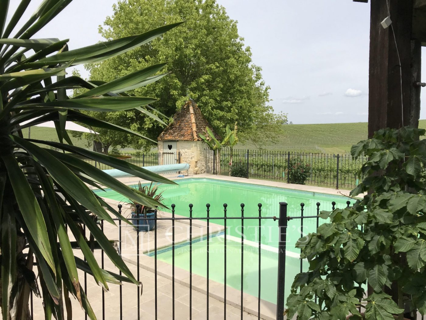 Swimming pool - Country House/Chateau with Boutique Vineyard