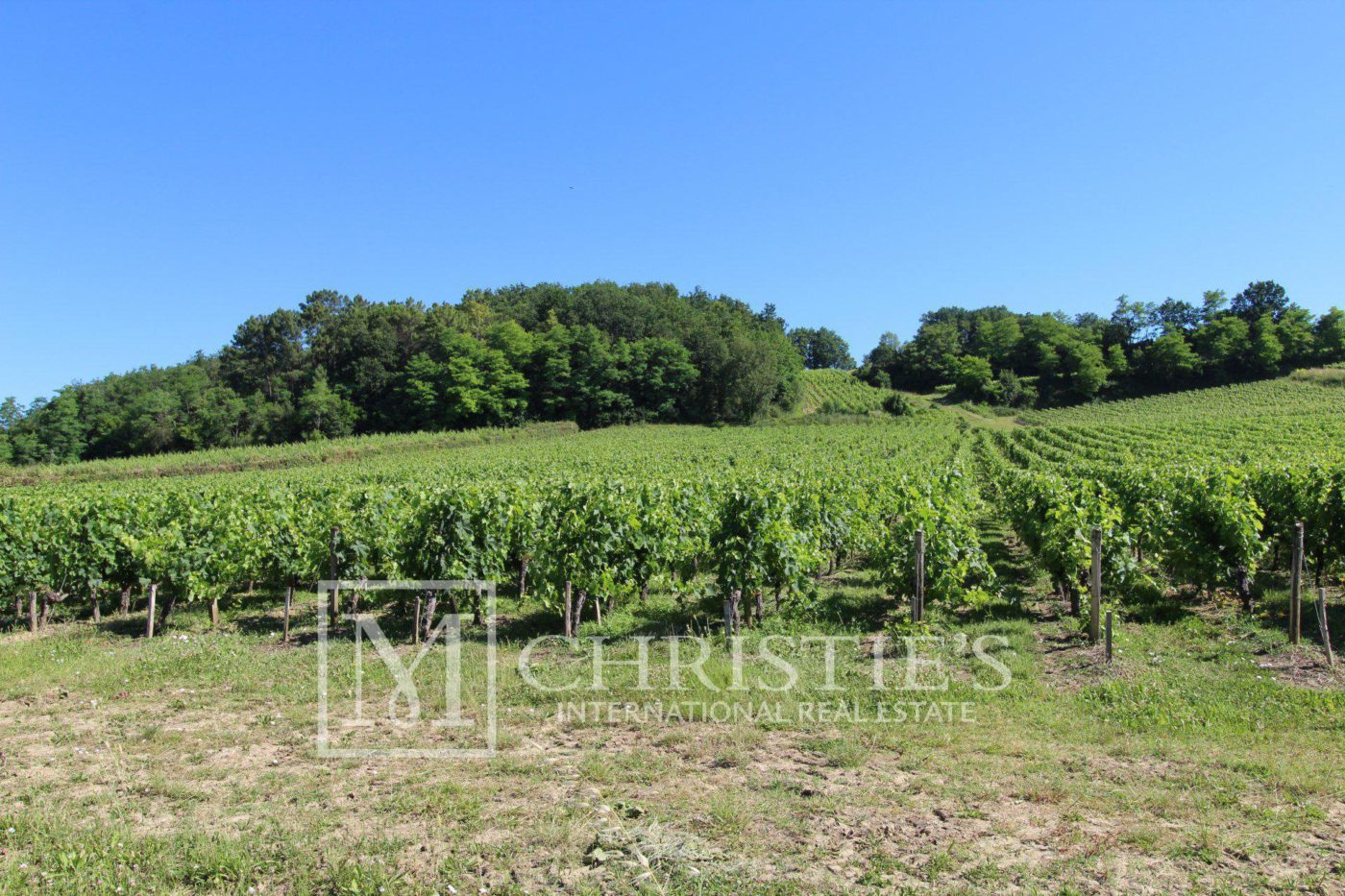 Highly rated turnkey vineyard estate in AOC Cotes de Bordeaux