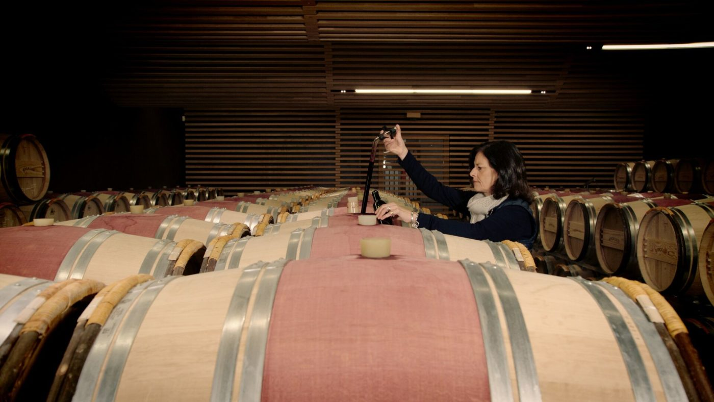 Things to know before buying a Bordeaux vineyard