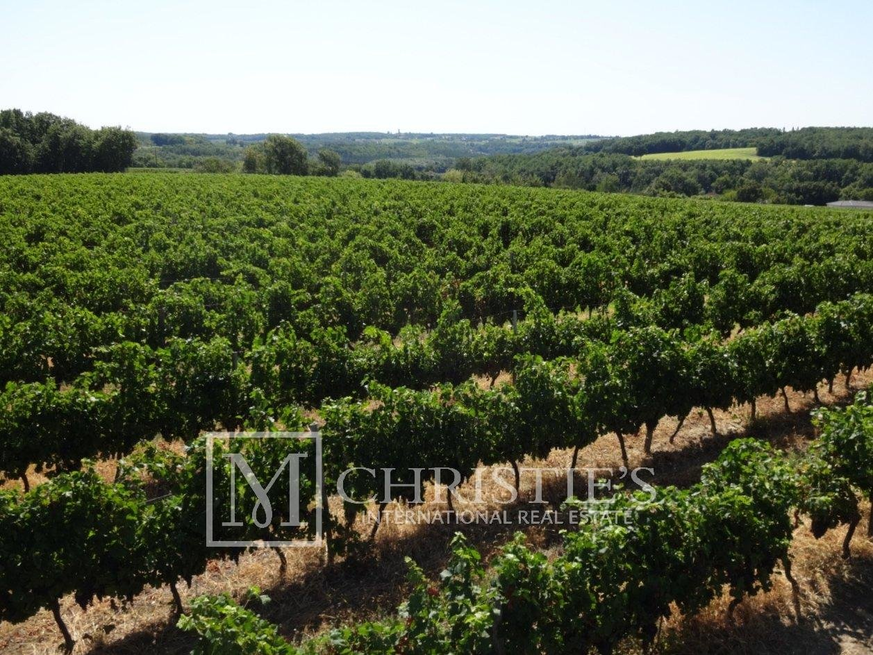 Sea - Attractive AOC Côtes-de-Duras vineyard with residence, gîte and swimming pool