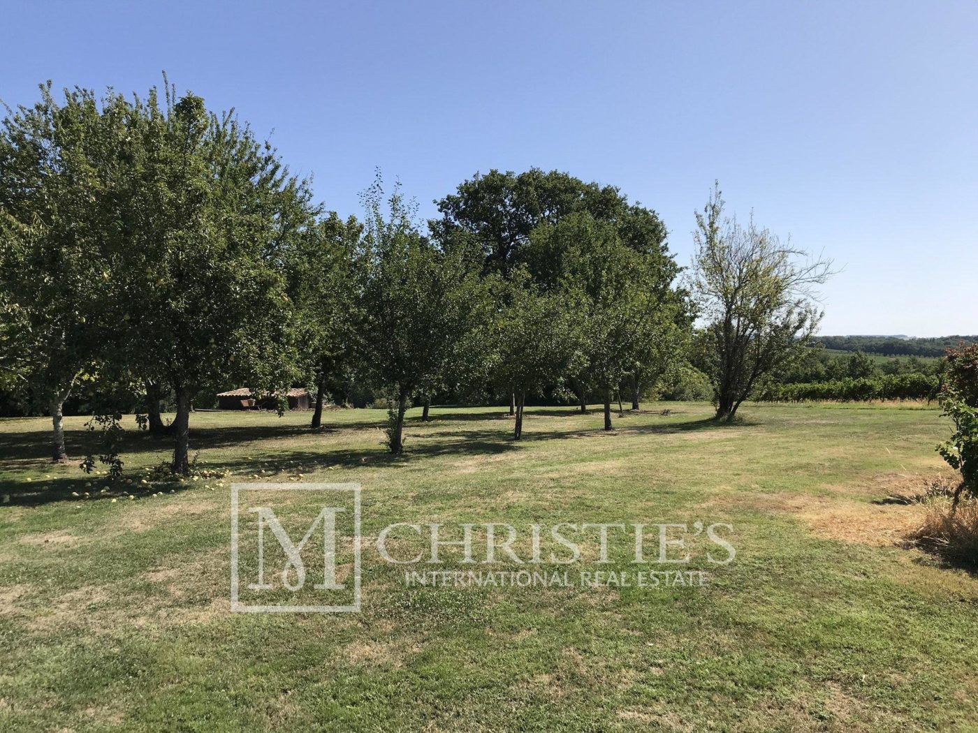 Courtyard - Attractive AOC Côtes-de-Duras vineyard with residence, gîte and swimming pool